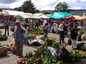 Food sovereignty in action - Fresh, varied, and local produce being sold at a campesino market. Photo by Lina Forero.