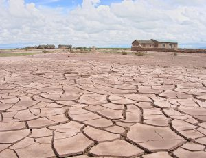172 of Bolivia's 339 municipalities have declared their own states of emergency, due to the country's worst drought in 25 years. Photo by OIKOS.